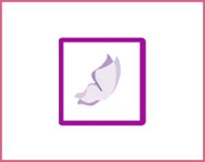 vulvodiniainfo-logo